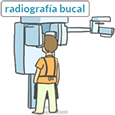 radiografia bucal